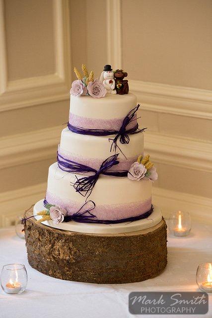 Devon Wedding Photography Langdon Court Hotel (18)