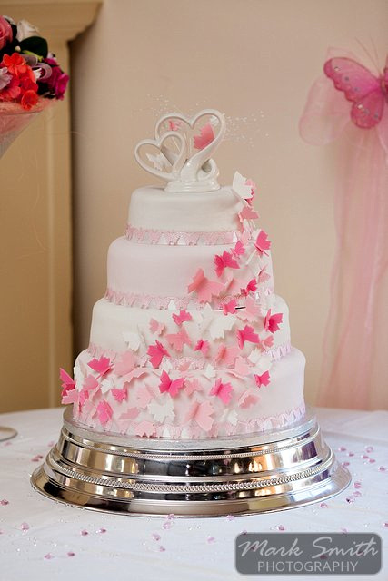 Elfordleigh Wedding Photography (19)
